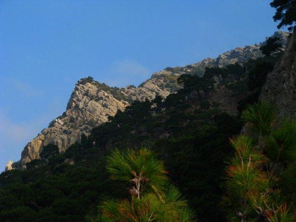 Скалы над Инжиром